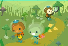 Octonauts Numere Ascunse