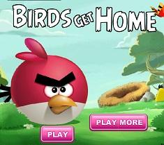 Angry Birds Intoarcerea Acasa
