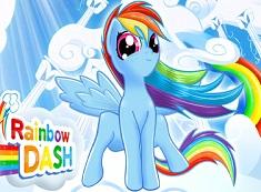 Rainbow Dash Intre Nori