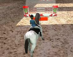 Sarituri cu Calul 3D