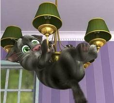 Talking Tom Cat 2 HD