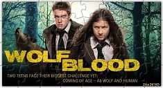 Wolf Blood Puzzle