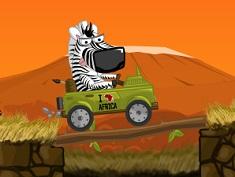 Zebra Zou Safari