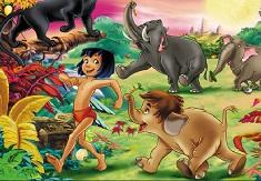Cartea Junglei Obiecte Ascunse