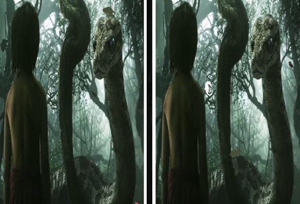Cartea Junglei Sase Diferente