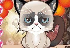 Grumpy Cat de Imbracat