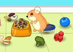 Hamsterul si Mancarea