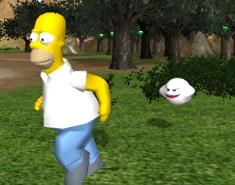 Homer de Aventura 3D