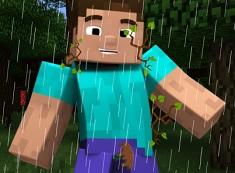 Minecraft si Furtuna din Padure