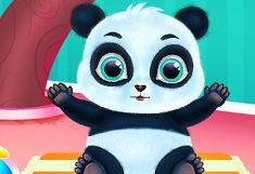 Panda Dragut de Ingrijit si Imbracat