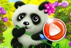 Panda Fericit
