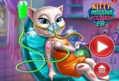 Pisica Accident in Misiune