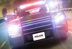 Politia in Actiune 2