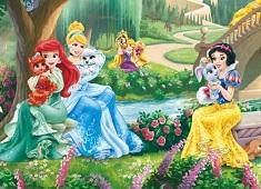 Printesele Disney Distractie la…