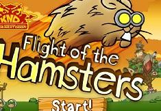 Propulsarea Hamsterilor