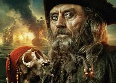 Puzzle cu Capitanul Barbosa