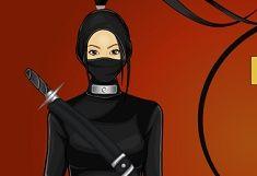 Stilul Ninja