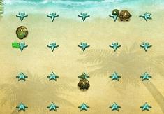 Testoasele pe Plaja