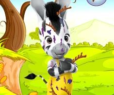 Zebra Zou Messy